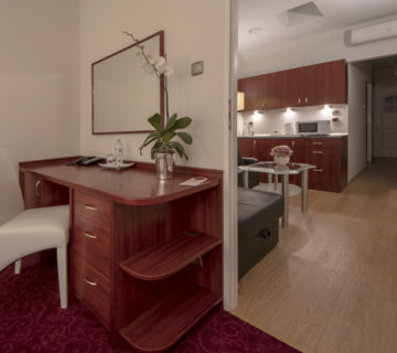 An apartment with a kitchenette<br/>(bedroom with a large bed and a living room with a sofa bed, maximum for four people)